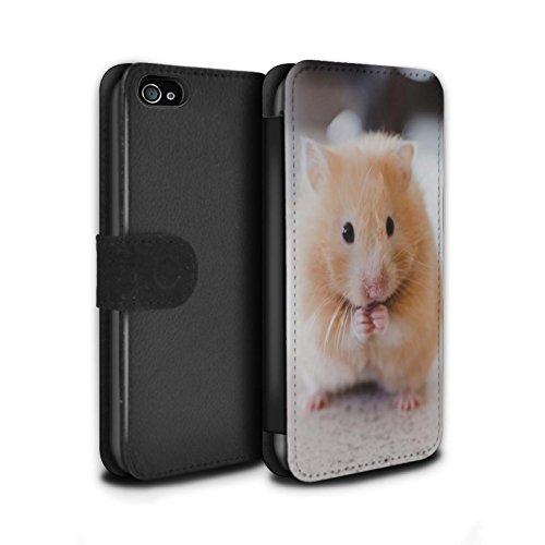 Stuff4® PU-Leder Hülle/Case/Tasche/Cover für Apple iPhone 4/4S / Goldener Hamster Muster/Niedlich Haustiere Kollektion