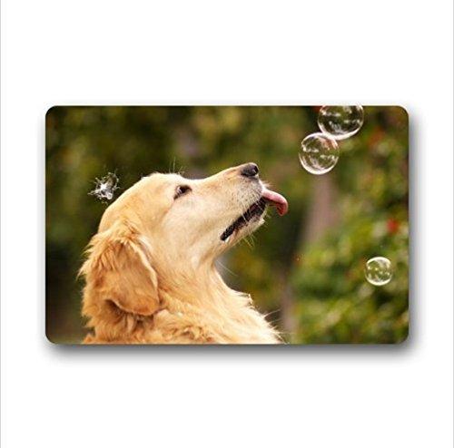 KLing Benutzerdefinierte Cute Golden Retriever Dogs Indoor/Outdoor Fußmatte Fußmatte 16 x 24,40 cm x 60 cm -