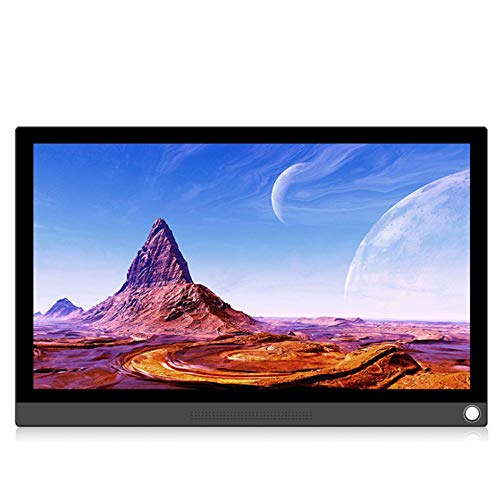 - Widescreen-lcd-panel (P15T 15.6in tragbarer Anzeigemonitor PC Typ C FÜR PS4 / Xbox/Switch/PC/Android schwarz)