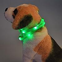 Itian USB Ricaricabile Impermeabile Luci a LED Fluorescenti Lampeggianti Cinghia della Fascia Registrabili di Modo Cane Collare (Verde)