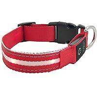 """LumoLeaf LED collar de perro iluminado, rojo, X-Small 9.8-13.8 """"/ 25-35 cm, USB recargable con luces intermitentes de resistencia a la intemperie, cinturón de nylon reflectante, 5 colores / 3 tamaños disponibles."""