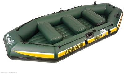 FISHMAN II 500