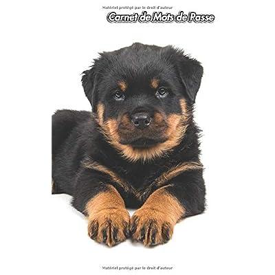 Carnet de Mots de Passe: Rottweiler | 109 Pages | Pour 432 Entrées | Site Web, Nom d'utilisateur, Mot de Passe et Notes | Plus petit que le format A5 | Internet Security