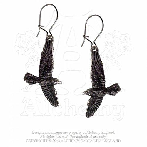 Alchemy Gothic Corvo nero Coppia di Orecchini