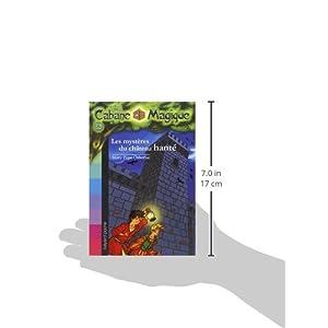 La Cabane Magique, Tome 25 : Les mystères du château hanté