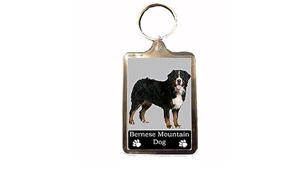 Bernese Mountain Dog Collectable Dog Keyring