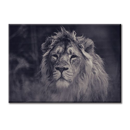 toile-de-peinture-cadre-impression-numerique-photographie-des-animaux-roar-lion-king-art-bw-100x70-c