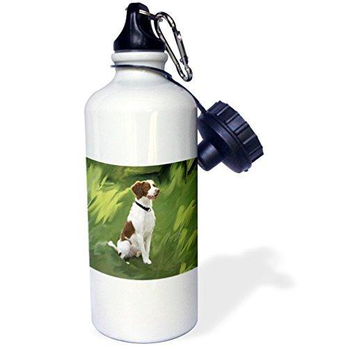 statuear-brittany-in-alluminio-20-ml-600-ml-bottiglia-acqua-sport-regalo