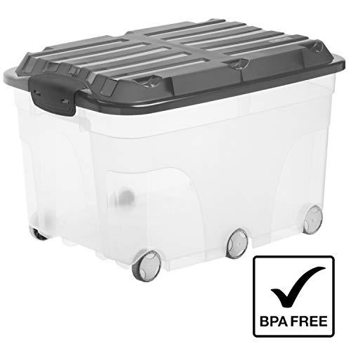 Rotho Roller 6 Aufbewahrungsbox 57 l mit Deckel und Rollen, Kunststoff (PP), transparent/anthrazit, 57 Liter (59,5 x 40 x 37 cm)