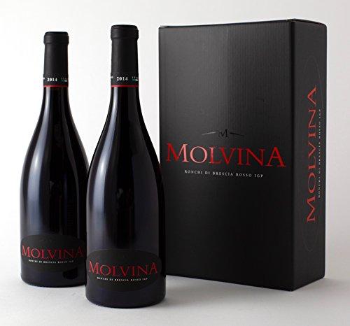 Molvina | ronchi di brescia rosso igp 2014 | vino rosso pregiato italiano | vino rosso intenso con riflessi rubino. invecchiato in botti di rovere di slavonia fino a 50 mesi (2 x 0.75 lt bottiglie)