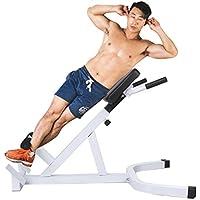 Tomasa Multifuncional Banco Gimnasio Adjustable Romano Silla Fitness Fuerza Extensión Hiperextensión Posterior Ejercicio 110 x 69cm