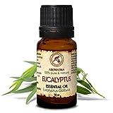 Eukalyptus Öl 100% Naturreines Ätherisches 10ml - Eucalyptus Globulus - China - Besten Für Beauty - Sauna - Aromatherapie - Aroma Diffuser - Duftlampe - Eukalyptusöl
