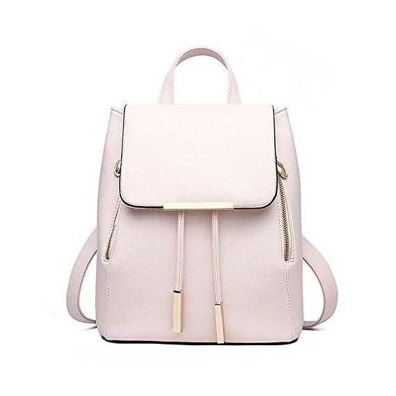 Stylish Backpack from Alice Girls Cadence Backpack School bag College Bag Casual Backpack handbag backpack (gold)