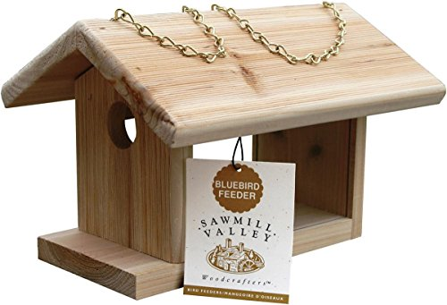 Bluebird-nuggets (C & S Produkte Bluebird Feeder, 4-tlg.)