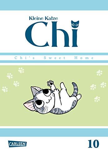 Kleine Katze Chi 10 (10)