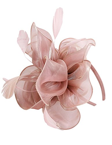 EEVASS Damen Tulle Feather Fascinator Cocktail Hut Haarclip Hochzeit Derby Party (# Nude pink)