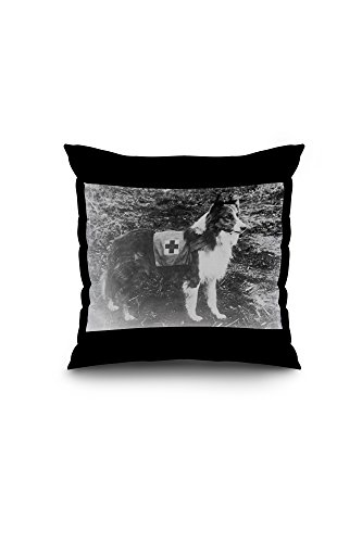 red-cross-dog-in-italy-photograph-16x16-spun-polyester-pillow-case-black-border