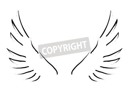 "Leinwand-Bild 30 x 20 cm: ""Simple sketch of wings"", Bild auf Leinwand"