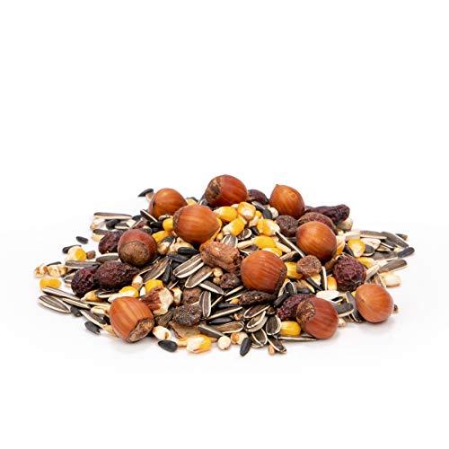 AniForte Wildlife Premium Eichhörnchenfutter 1 kg für Eichhörnchen und Streifenhörnchen – Naturprodukt Mischung, Besondere und artgerechte Eichhörnchen Fütterung – Unsere Spezial Futtermischung - 2