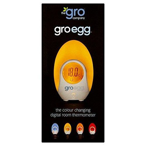el-gro-huevo-termometro-habitacion