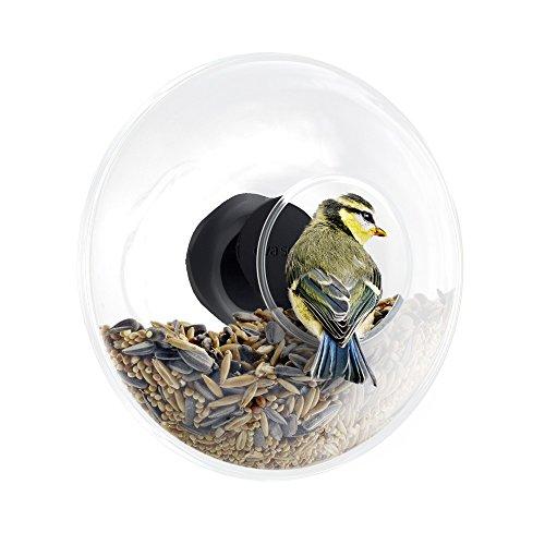 eva-solo-571048-mangeoire-pour-oiseaux-en-verre-pour-fentre-volume-90-ml-transparent