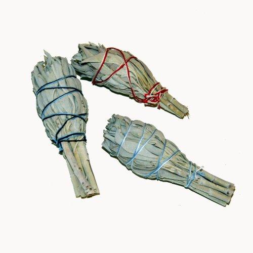 Räucherwerk: 3 x Mini & Baby Salbei-Stäbe/Bündel (je ~20-25gr.) von Native-Spirit.eu - Smudge Stick Mini~11cm (3-4 Inch) white sage (1) (Weißer Salbei-stab)
