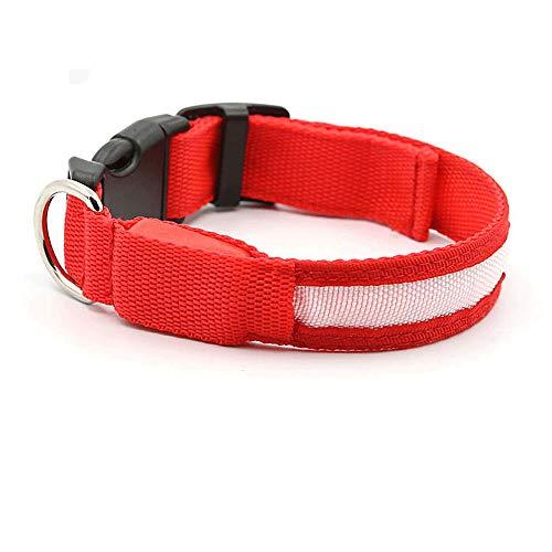 HN LED-Licht Kragen Niedlich ALS Bär Teddy Hund Nachtlicht PET Halskette Kleinen Hund Haustier Traktion Hund Ring,Red,L (Kragen Licht Hund)