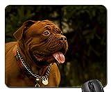 Gaming-Mauspads, Mäusematte, Bordeaux-Dogdog-Hintergrund-Bulldogge