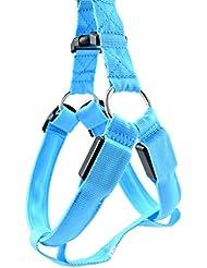 mascotas perros accesorios arnes deportiva perros arnes pet harness perro collar chaleco, Luminoso ajustable, correas de Nylon LED