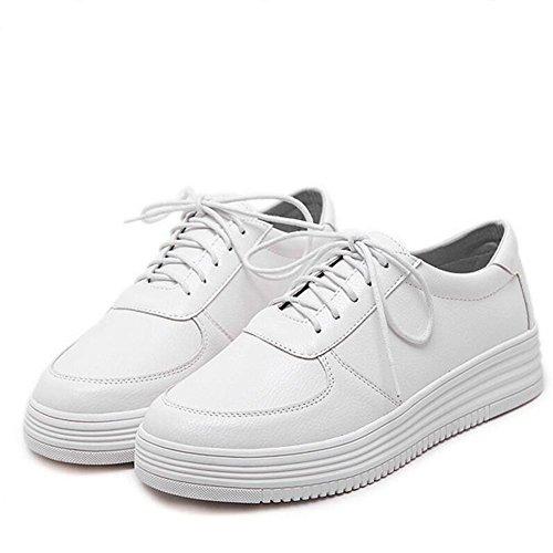 L@YC Frauen flache Schuhe Im Fr¨¹hjahr und Herbst ein kleiner wei?er Schuh Schn¨¹rsenkel Joker Breathable Casual Schuhe Wei? Schwarz White