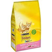 Amazon.es: pienso gatos