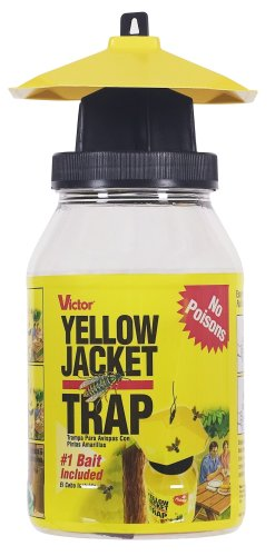 victor-reusable-wasp-trap-includes-bait