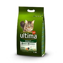 Ultima crocchette per Gatti Adulti con Salmone–Confezione di 5x 3000gr–Totale: 15000Gr