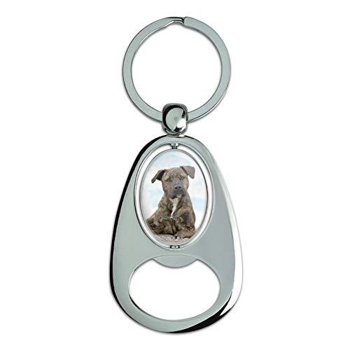 GRAPHICS & MORE Graphique et Plus Staffy Staffordshire Bull Terrier Sandy Beach en métal chromé rotatifs Motif Ovale Décapsuleur Porte-clés