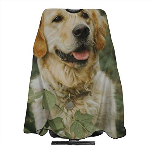 Yellow Labrador Retriever On Forest Personalized Custom Professional Hair Salon Apron, Polyester Hair Shawl 55
