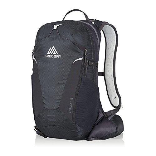 Gregory Miwok 18 Hiking Backpack storm black