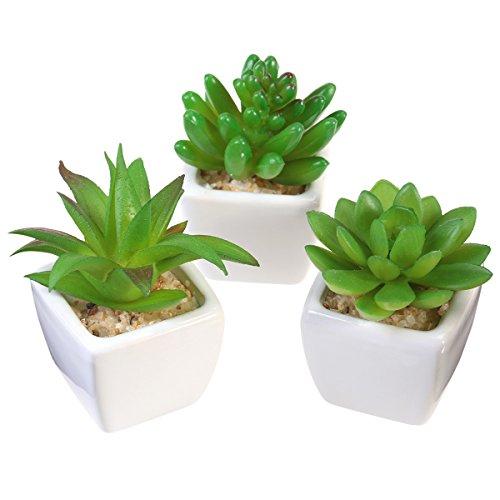 Vosarea 4 STÜCKE Topf Sukkulenten Pflanzen Arrangements Kleine Mini Künstliche Gefälschte Pflanzen in Töpfe Container für Tisch Desktop Home Dekoration