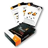 figgrs Trainingskarten Functional Fitness (50 Bodyweight Übungen für eine leistungsfähige und dynamische Muskulatur)