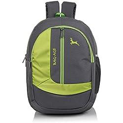 Bag-Age School Satchels (30 L ) Zuma School Backpack (Grey Green)
