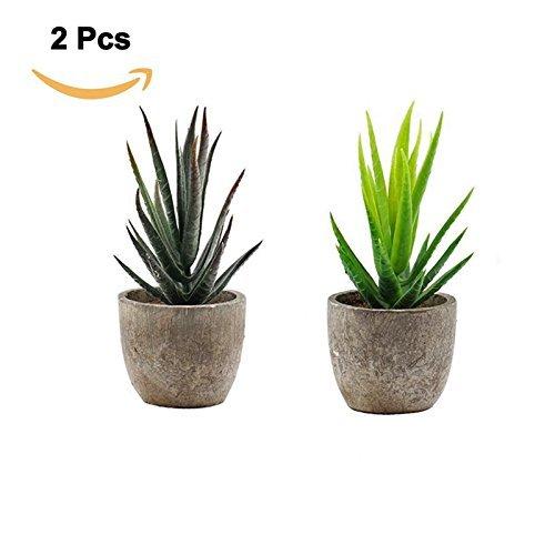 GreenEur künstlicher sukkulente Pflanze - 2 Stück mit grauen Töpfen für Wohnkultur