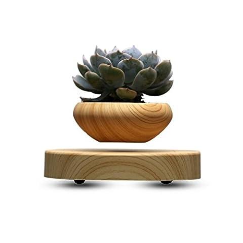 magnétique flottant Pots de bonsaï bonsaï Pot bonsaï Pot de fleurs flottant pour bureau