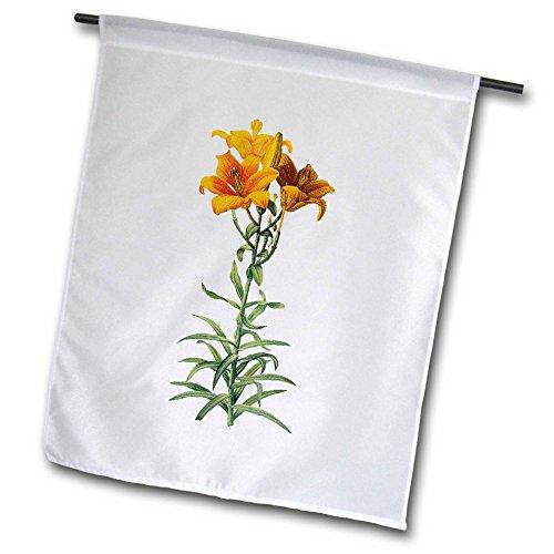 3dRose FL_106808_1 Gartenflagge, 30,5 x 45,7 cm, Retro-Aquarell-Blumenmuster, Orange Lilien-Lilium Bulbiferum