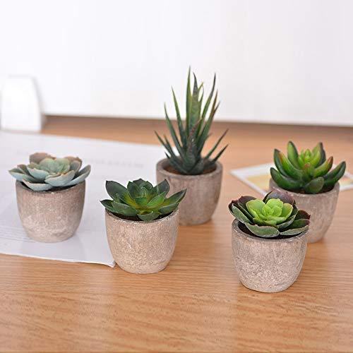 Urase 5er Set Mini Künstliche Sukkulenten Dekorative Kunstpflanze Bonsai mit Topf Simulation Pflanzen für Balkon Garten Balkon Wohnzimmer Dekoration