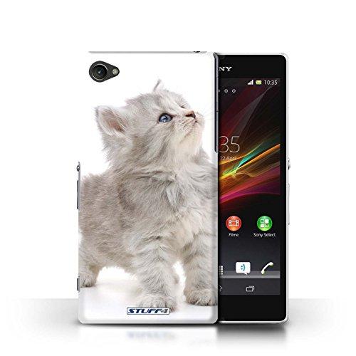 Kobalt® Imprimé Etui / Coque pour Sony Xperia Z1 Compact / Chaton Parasseux conception / Série Chatons mignons Chaton curieux