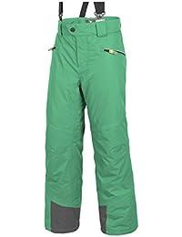 Salewa Bering 4PTX/PF K PNT Pants