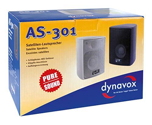 Dynavox AS-301 High Class Satelliten Lautsprecher (60 Watt) silber (Paar) - 3
