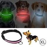 Jiuyue-pets Einstellbare 3-Mode LED Blinkende Hundehalsband, Größe: S (Artikelnummer : S-HPS-0602XL)