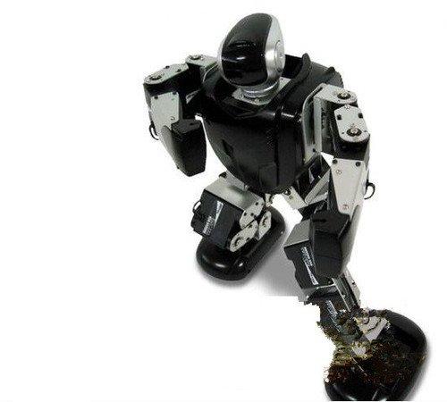 Gowe-metal-Fighter-de-robotshumanoide-y-Biped-Robots