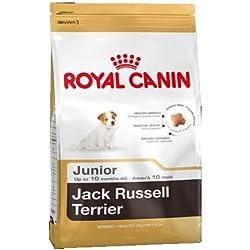 ROYAL CANIN/Jack Russel Terrier Junior Sac de 3 kg Croquettes pour chiot Jack Russel Junior de 2 à 10 mois