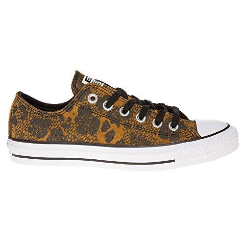 Converse All Star Ox Donna Sneaker Marrone Chiaro Marrone chiaro